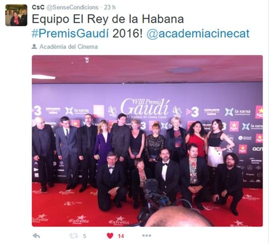 tweet rey habana