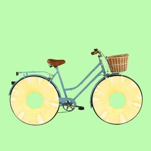 2. bici pinya